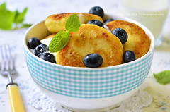 Curd fritters . (lilechka75) Tags: morning food baby cheese breakfast recipe dessert milk yummy healthy berry blackberry dish sweet cottage gourmet delicious blueberry eat homemade honey meal pancake organic diet cooked dairy product fried thick curd roasted pattie prepared fritter