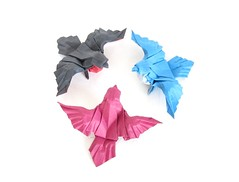 Robins and Rejoice! (folding~well) Tags: bird robin paper origami folding
