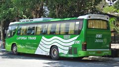 Laforga Trans 09117 (II-cocoy22-II) Tags: city bus philippines daewoo sur vigan trans ilocos laoag norte batac laforga 09117