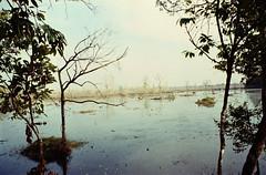 (mathias shoots analogue) Tags: analog 35mm cambodia analogue 135 angkor fujinatura fujicolor100 tetenal homedevelopment