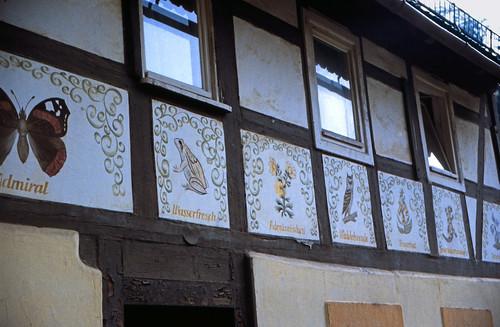 "Elbsandsteingebirge (083) Niederrathen • <a style=""font-size:0.8em;"" href=""http://www.flickr.com/photos/69570948@N04/21916134635/"" target=""_blank"">View on Flickr</a>"