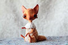 cookie fox (oso_polar) Tags: girl toy doll friendship handmade redhead fox bjd dim laia dimdoll minifee