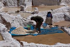Peru_0182 (Radimek) Tags: travel peru southamerica inca salt adventure sacredvalley maras saltevaporationponds urubambavalley salinasdemaras