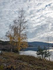 Norway (Pieter Mooij) Tags: autumn norway norge herbst herfst norwegen noorwegen fujix20