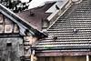 Roof (Mariasme) Tags: roof pigeons sydney dramatic terracehouse brightonlesands seenbetterdays