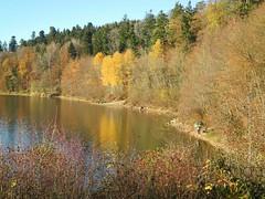 Warmer Herrenmühlsee (almresi1) Tags: autumn lake beach strand germany herbst ufer spiegelung sonnenschutz schorndorf göppingen sonnendach adelberg herrenmühlsee