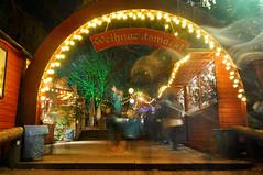 Weihnachtsmarkt Stadtgarten (wuestenigel) Tags: christmas xmas night weihnachten market cologne kln weihnachtsmarkt glhwein colonia langzeitbelichtung