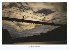 Amazon bridge (Galo Andrés) Tags:
