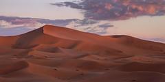 Morning Dunes - Erg Chebbi (simon.web92) Tags: sahara desert dunes sand red light sunrise clouds morning canon6d 24105mm ps