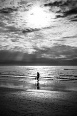 Shell fishing - Florida, United States - Black and white street photography