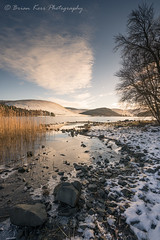 St Mary's Loch - A Cold Morning (.Brian Kerr Photography.) Tags: stmarysloch scottishborders scotland loch visitscotland scotspirit clouds frozen snow weather winter sonyuk a7rii availablelight reflections rocks coldmorning reeds grasses briankerrphotography briankerrphoto wwwbriankerrphotographycom tree mountains outdoorphotography ourscotland alba dgwgo dumfriesandgalloway dumfriesgalloway sonyzeiss fe2470mmf28gm ice