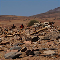 a hard life (me*voilà) Tags: namibia landscape rocks stones children herd goats himba