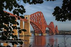 Forth Bridge (7) (Shuggie!!) Tags: architecture bridges forthbridges hdr landscape leaves lothians morninglight reflections scotland southqueensferry zenfolio karl williams karlwilliams