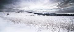 Paysage enneigé (yriann48) Tags: lozère paysage landscape photographelozère languedocroussillon cielmenaçant occitanie lemassegros froggysphoto nikond610 neige