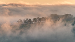 Tissington Morning Mist (JamesPicture) Tags: derbyshiredalesdistrict england unitedkingdom tissington mist treeline peak district
