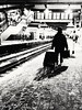 12/365 Commuting in the cold (Zed.Cat) Tags: eastcroydon station man suitcase baggage travel slush platform cold commuting winter