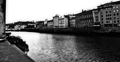 """The Arno River"" (giannipaoloziliani) Tags: italia italy florence firenze città city downtown arno river fiume toscana acqua water perspective prospettiva prospettica biancoenero blackandwhite nikon nikoncamera nikonphoto nikonphotography orizzonte horizon architettura architecture ponte bridge vista view old monochrome monocromatico flickr cielo sky skyline"