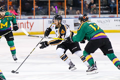 "Missouri Mavericks vs. Quad City Mallards, January 21, 2017, Silverstein Eye Centers Arena, Independence, Missouri.  Photo: John Howe / Howe Creative Photography • <a style=""font-size:0.8em;"" href=""http://www.flickr.com/photos/134016632@N02/32487055486/"" target=""_blank"">View on Flickr</a>"