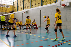 170129_VBTMU13_1_029 (HESCphoto) Tags: volleyball therwil vbtherwil mini damen mu13 99ersporthalle turnier saison1617