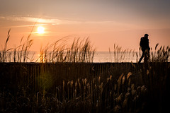 LH Beach (a n n e s o D) Tags: throughherlens sun flare beach sunset lehavre light lumix gx7