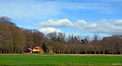 Landscape Forest  - On Explore (JaapCom) Tags: jaapcom ijsselvliedt wezep landscape landed landschaft landgoed clouds farmhouse dutchnetherlands hollanda holland natural naturel