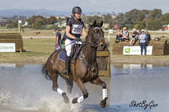 IMG_4502 (gavinglis) Tags: horses horse sport tie crosscountry 7d equestrian equine xcountry tamworth horseandrider eventing equestriansports aelec aussieeventing aussieequestrian