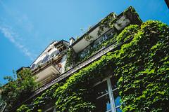 Green (martindesu) Tags: switzerland europe luzern rx1