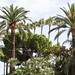 """Sights in Cannes • <a style=""""font-size:0.8em;"""" href=""""http://www.flickr.com/photos/25269451@N07/20769805043/"""" target=""""_blank"""">View on Flickr</a>"""