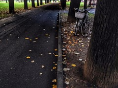 Forgot, forgiven (Lumase) Tags: park trees two path lovestory bycicles