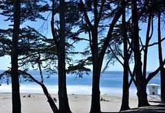 Trees and ocean (clairehintze) Tags: ocean longexposure blue beach silhouette umbrella sand cypresstrees lifeguardtower twinlakesbeach d700 nikond700