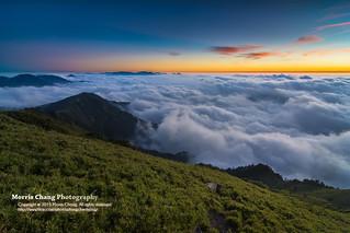 Albizzia julibrissin mountain, Taiwan 合歡山