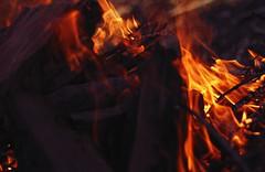 Al Fuego de los Condenados (J.J.Evan) Tags: wood fire 50mm madera flames campo fuego llamas troncos