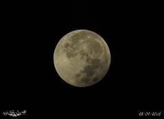 Luna de Sangre y Eclipse, 28/09/2015...  en Playa de Punta Candor (Rota, Cdiz). (LolaCorts) Tags: cdiz lolacortsneva lunadesangreyeclipse 28092015enplayadepuntacandorrota