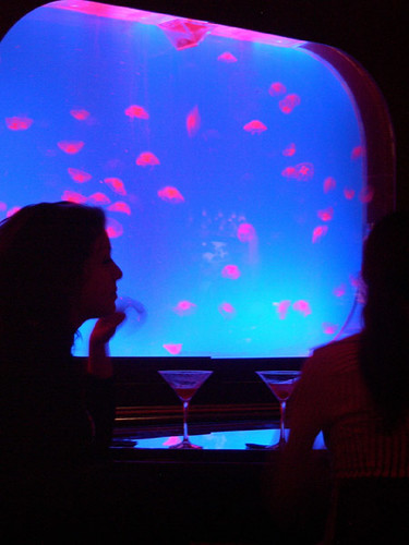 Custom Jelly Exhibit - Night Club - Boston - 3