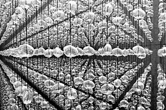 Souls Cellar | Almas en bodega | Cantina d'anime 2 (Raul Jaso) Tags: blackandwhite bw byn blancoynegro lines matrix mexico blackwhite mexicocity df pattern patterns perspective line sphere perspectiva spheres ciudaddemexico linea biancoenero patron thematrix mexicodf lineas patrones puntodefuga esfera esferas profundidaddecampo linee profundidad fz150 panasonicfzseries museomemoriaytolerancia panasonicfz150 rauljaso rauljasofotografia rauljasophotography