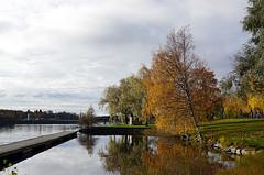 Joensuu - Finland (Sami Niemelinen (instagram: santtujns)) Tags: city colors suomi finland river colours north autumm joensuu syksy joki karjala kaupunki carelia vrit pohjois pielisjokis