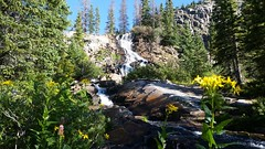 5197 The upper waterfall on Lake Creek  just below Moon Lake as we hike the Emerald Lake Trail (_JFR_) Tags: camping colorado hiking backpacking wilderness lakecreek weminuche weminuchewilderness sanjuannationalforest emeraldlaketrail