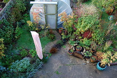 Looking Down on the Herb Hexagon - October 2015 (basswulf) Tags: uk autumn england fall garden unmodified lenstagged oxford 32 1855mmf3556g polytunnel d40 3008x2000 permissions:licence=c image:ratio=32 201510 normcres herbhexagon lookingdownonthegarden 20151006