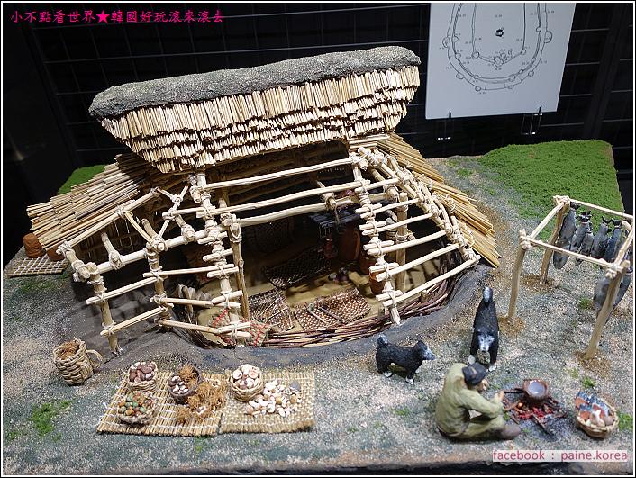 函館繩文文化博物館 (9).JPG