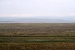 RU2033  (S.K. LO) Tags: russia easternsiberia irkutskregion
