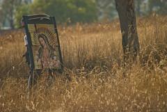 Caminata Reflexiva 2 (Momoztla) Tags: mexico persona basilica guadalupe caminata virgen imagen peregrinacion caminando 2015 ixtapaluca momoztla