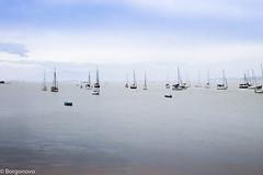 IMG_7132 (Borgonovo Fotografias) Tags: praia mar santoantoniodelisboa