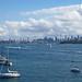 sydney harbour gt1