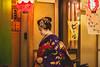 Kyoto, Japan (Aicbon) Tags: verde pontocho gion geisha maiko hanamachi casas calles street alley pontochostreet pontochoalley person people persona mujer woman tradicional japa japon kyotoshi kiotonight nocturna trad canon eos 500d 50mm f14