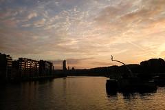 La Meuse (Liège 2016) (LiveFromLiege) Tags: liège liege liegi lieja luik lüttich wallonie belgique belgium sunset statue plongeur tourdesfinances coucherdesoleil