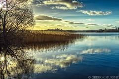 lake of Menteith (Gregor171) Tags: lakeofmenteith aberfoyle trossachs scotland