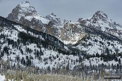 Above Treeline (kevin-palmer) Tags: grandtetonnationalpark nationalpark snowshoeing wyoming winter snow snowy cold nikond750 grandteton clouds tamron2470mmf28 white tetonmountains trees