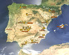 Spain Ibex Hunt & Driven Partridge Hunts 53