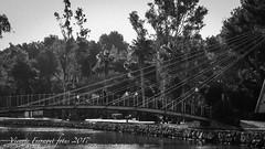 P1128920 (V. Ferragut) Tags: rio santa eularia puente paseo vegetacion candados blanco negro olympus ferragut ibiza eivissa
