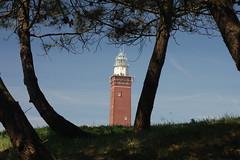 Lighthouse Ouddorp. (Crazy Rudie) Tags: 40d bomen trees blauw blue eos40d eos canon netherlands nederland zuidholland goereeoverflakkee ouddorp vuurtoren lighthouse